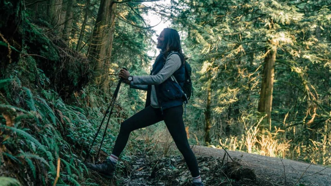 Comment choisir ses bâtons de randonnée ?